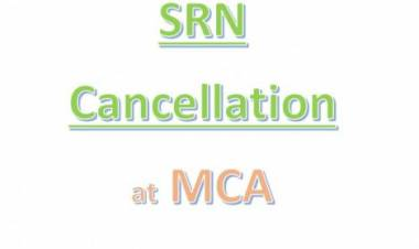 How To Cancel SRN Due To Unsuccessful Payment On MCA